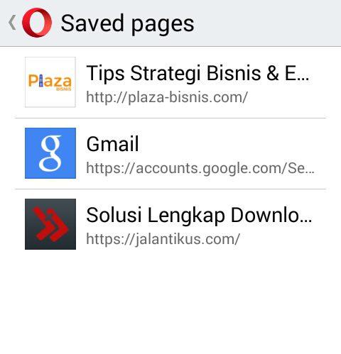 List Web yang telah di Save
